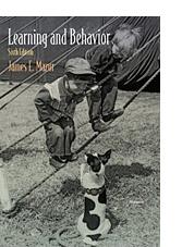 LearningBehavior_Mazur