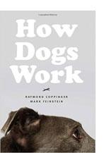 howdogswork